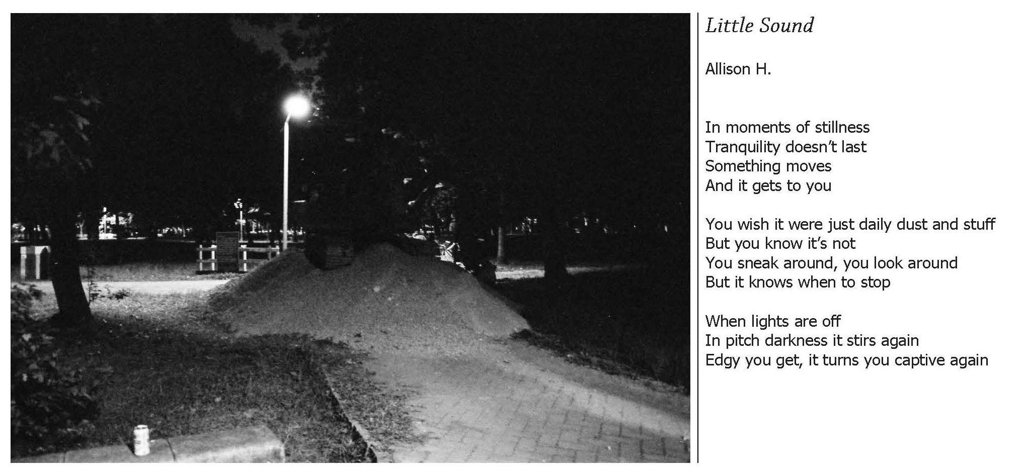 little-sound_collagers
